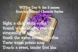 the-5-senses-wipjoy