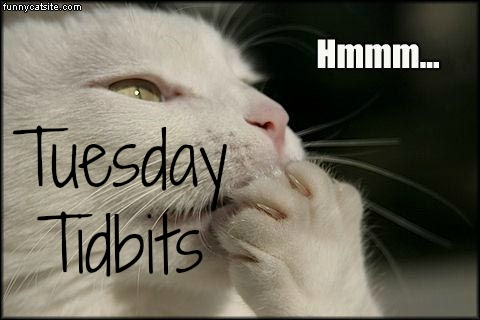 tuesday-tidbits
